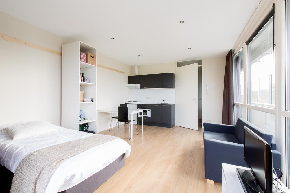 Studio 20 huisnummer 63 5623pl 040 - Gemeubileerde woonkamer ...